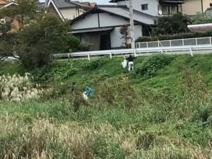 291021里川清掃3